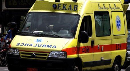 Σκύλος επιτέθηκε και τραυμάτισε γυναίκα στα Γιαννιτσά