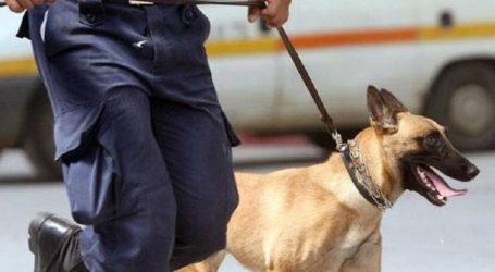 Σύλληψη 21χρονου στη Ρόδο για μεταφορά τεσσάρων κιλών ηρωίνης