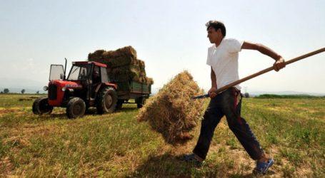 «Πράσινο φως» για τον εκσυγχρονισμό των αγροτικών εκμεταλλεύσεων