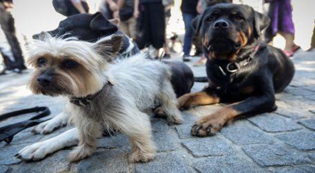 Πορεία στο κέντρο της Αθήνας για τα δικαιώματα των ζώων