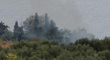 Πυρκαγιά στα Μεγάλα Χωράφια στα Χανιά