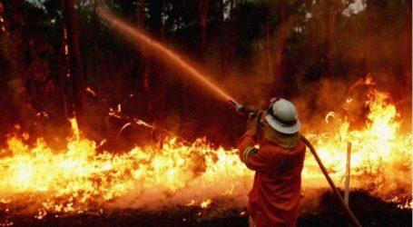 Ηλικιωμένο ζευγάρι έχασε τη ζωή του από τις πυρκαγιές στην Αυστραλία