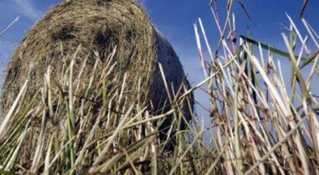 Απαγόρευση της καύσης γεωργικών υπολειμμάτων και ποινές για τους παραβάτες στον δήμο Δέλτα