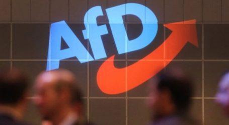 Φραστικά πυρά πολιτικών δυνάμεων εναντίον του AfD