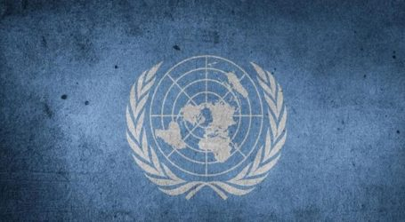 Καλεί την Άγκυρα να ερευνήσει εκτελέσεις στη Συρία