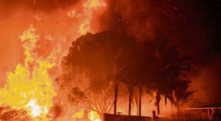 Νέφος καπνού πνίγει το Σίδνεϊ εξαιτίας των πυρκαγιών