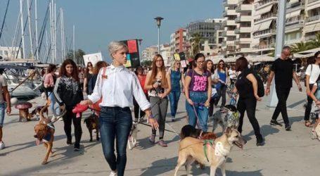 Δεκάδες Βολιώτες με τα σκυλιά τους στο Dog Walk στην παραλία [εικόνες]