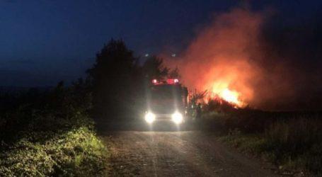 Φωτιά καίει αποθήκη ξυλείας στην Κοιλάδα – 5 οχήματα της Πυροσβεστικής στο σημείο
