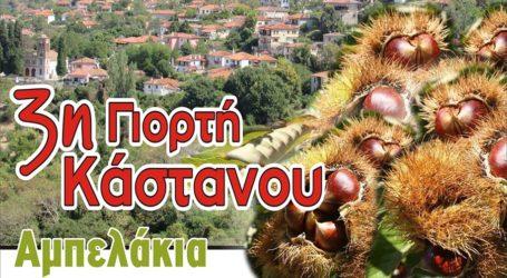 Το επόμενο Σαββατοκύριακο 19-20 Οκτωβρίου, η 3η Γιορτή Κάστανου στα Αμπελάκια