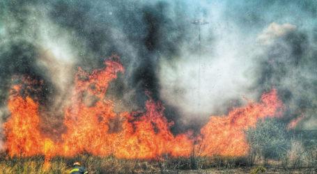 Σπινθήρας έβαλε φωτιά σε χωράφι με βαμβάκι στον Αλμυρό