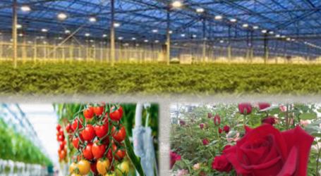 Ημερίδα για την καινοτόμα Παραγωγή Λαχανοκομικών και Ανθοκομικών προϊόντων