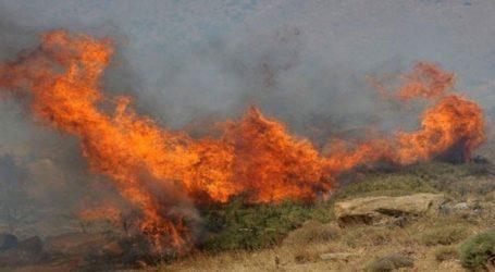 Φωτιάσε γεωργική έκταση στιςΣπέτσες