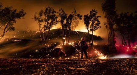 Ο Τραμπ απειλεί ότι θα «ψαλιδίσει» τα κονδύλια για τις πυρκαγιές
