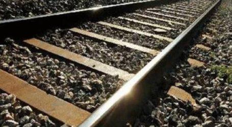 Τρένο παρέσυρε σκύλο και ακινητοποιήθηκε στη Σκύδρα