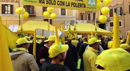 Στους δρόμους οι αγρότες διαμαρτυρόμενοι για τα αγριογούρουνα