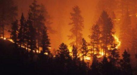 Δεκάδες πυρκαγιές σε εξέλιξη στην Αυστραλία