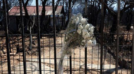 Στις 21 Νοεμβρίου συγκαλείται η Ολομέλεια Εφετών για τη φονική πυρκαγιά στο Μάτι