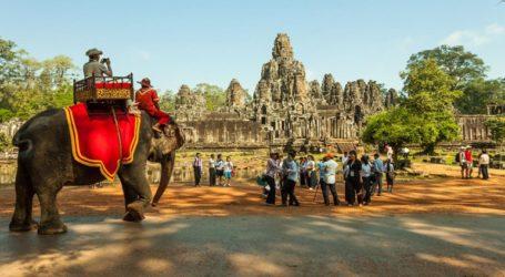 Απαγορεύτηκαν οι τουριστικές βόλτες με ελέφαντες στην περιοχή Άνγκορ