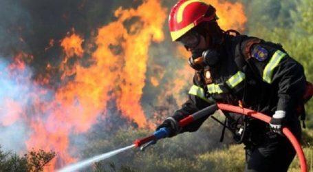 Φωτιά σε χορτολιβαδική έκταση στις Κορφές