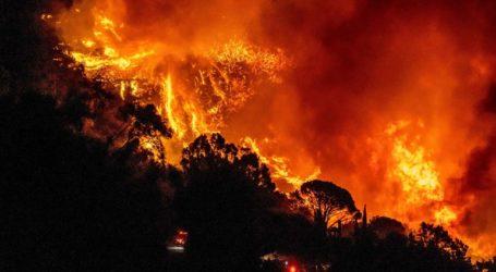 Ανεξέλεγκτη η φωτιά στην Καλιφόρνια- κάηκαν τουλάχιστον 800.000 στρέμματα γης