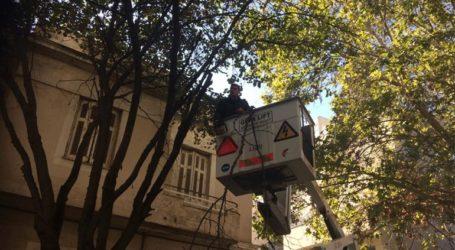 Δράσεις καθαριότητας του δήμου Αθηναίων στο Μεταξουργείο