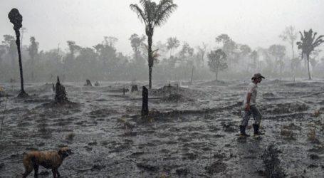 Καταγγελίες από ΜΚΟ για τη φυλάκιση τεσσάρων εθελοντών πυροσβεστών που κατηγορούνται ότι έβαλαν φωτιές στην Αμαζονία
