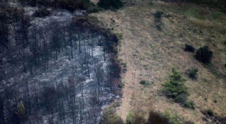 Λιγότερες φέτος κατά 14% οι καμένες δασικές εκτάσεις στη Δυτική Ελλάδα