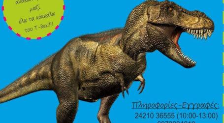 Γνωρίστε τους δεινόσαυρους στο Μουσείο Φυσικής Ιστορίας Βόλου