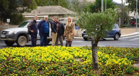 Κ. Αγοραστός από κόμβο Αγριάς: «Έργο ουσίας για την οδική ασφάλεια κατοίκων και επισκεπτών της περιοχής»