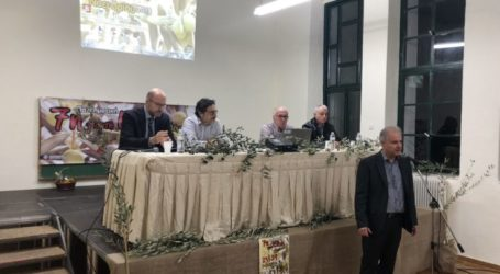 Ξεκίνησε η 7η Πανδημοτική Γιορτή Ελιάς του δήμου Τεμπών