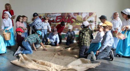 Κολλάτος στους Γόννους: Υπερήφανοι που κάναμε θεσμό την γιορτή Ελιάς