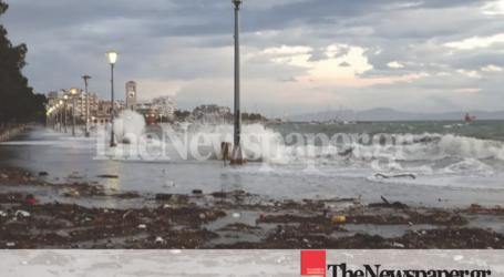 Οι ισχυροί νοτιάδες στον Βόλο αποκάλυψαν τα σκουπίδια του Παγασητικού [εικόνες]