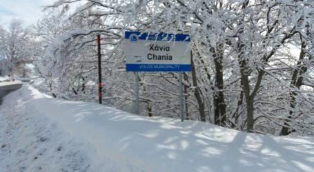 ΤΩΡΑ: Ξεκίνησε ασθενής χιονόπτωση στο Πήλιο [εικόνα]