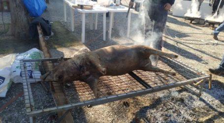 """Πλήθος Λαρισαίων για τη """"Γρουνοχαρά"""" στη Φιλιππούπολη – Δείτε φωτογραφίες"""