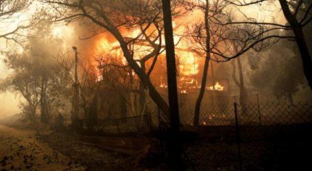 13 άνθρωποι κάηκαν ζωντανοί σε παράγκα