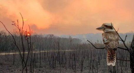Τοξικό νέφος καπνού λόγω των πυρκαγιών και πάνω από την Καμπέρα