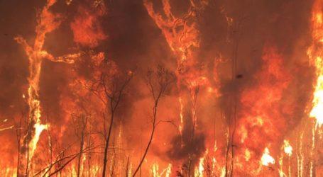 Μαίνονται από τον Σεπτέμβριο οι φωτιές στην Αυστραλία