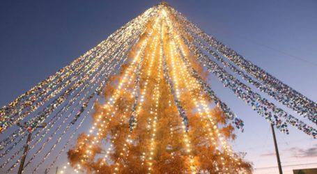 Ρεκόρ Γκίνες για το χριστουγεννιάτικο δέντρο στολισμένο με 51.626 κάρτες