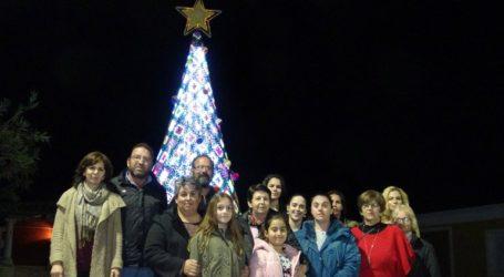 Πλεκτό χριστουγεννιάτικο δέντρο στον Αγαλά Ζακύνθου