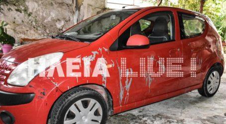 Πέταξαν οξύ στο αυτοκίνητο της προέδρου της Φιλοζωικής Κρεστένων