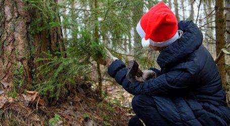 Οι Λετονοί καλούνται να διαλέξουν το χριστουγεννιάτικο δέντρο τους από το δάσος