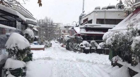 Παγετός στα ορεινά της Περιφερειακής Ενότητας Λάρισας