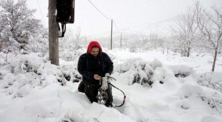Μάχη για την αποκατάσταση της ηλεκτροδότησης στα Βίλια Αττικής