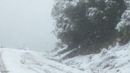 Χιόνια και στα ορεινά του Αλμυρού [εικόνες]