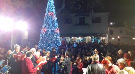 Φωταγωγήθηκε το Χριστουγεννιάτικο δέντρο στο Νότιο Πήλιο [εικόνες]