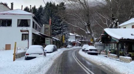 Ζηνοβία: Λίγο χιόνι – πολύ κρύο στο Πήλιο [εικόνες]