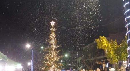 Φωταγωγήθηκε το Χριστουγεννιάτικο δένδρο στην Κοινότητα Συκουρίου