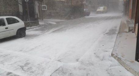 Ξεκίνησε το νέο κύμα κακοκαιρίας: Το έστρωσε στο Λιβάδι Ελασσόνας – Ελαφρά χιονόπτωση στα χωριά του δήμου Τεμπών (φωτο – βίντεο)