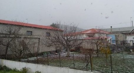 Ισχυρή χιονόπτωση στο ανατολικό άκρο του Δήμου Φαρσάλων (φωτο)