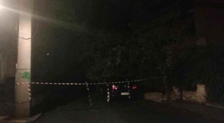 Πρωτοχρονιάτικη πτώση δέντρου στην Κρήτη